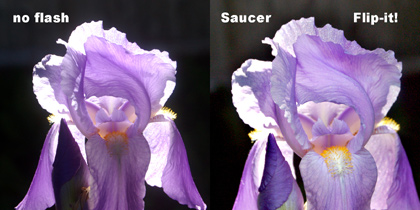 Picture of an iris comparing with and without Saucer Flip-it!