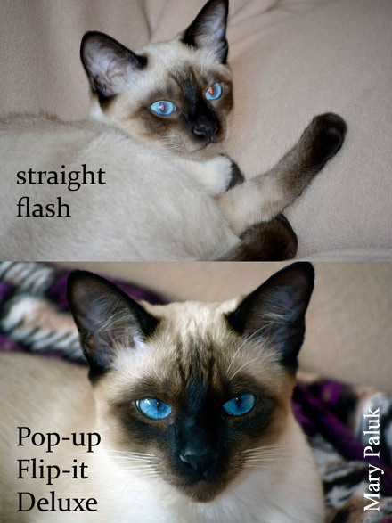 Straight flash-Pop-up Flip-it! Deluxe comparison by user Mary Paluk